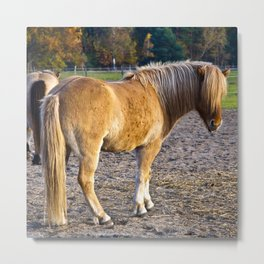 Autumnal Spirit of October Metal Print
