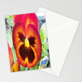 Pretty Pansy Stationery Cards