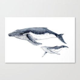 Humpback whale with calf Canvas Print