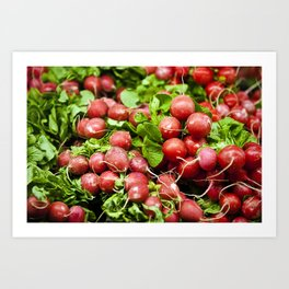 Fresh radishes Art Print