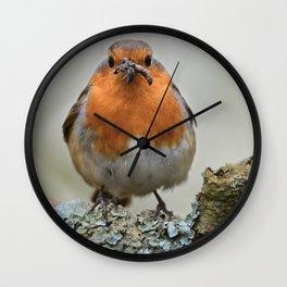 Chubby Robin Wall Clock