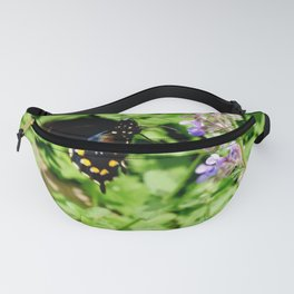 Pipevine Swallowtail Butterfly 2 Fanny Pack