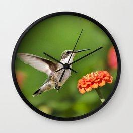 Beautiful Hummingbird Wall Clock