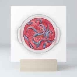 Watercolor Illustration of Chinese Cuisine - Drunken Shrimps   醉虾 Mini Art Print