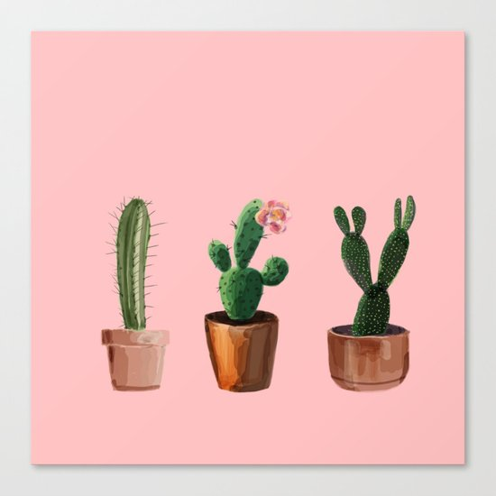 Three Cacti On Pink Background Canvas Print