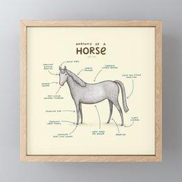 Anatomy of a Horse Framed Mini Art Print