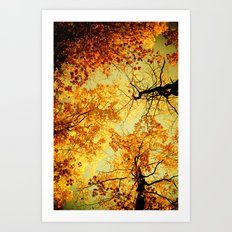 We Are Starlight, We Are Golden Art Print