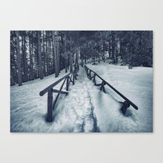 Snow path Canvas Print