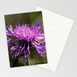 pink_lady2 Stationery Cards
