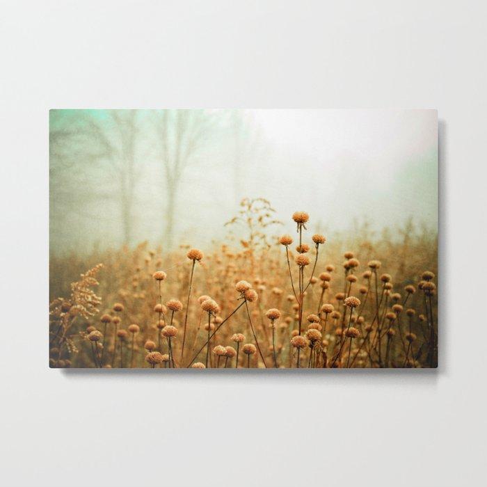 Daybreak in the Meadow Metal Print