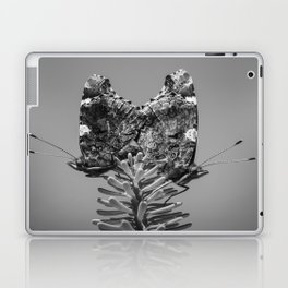 Red Admiral Butterflies Mating Laptop & iPad Skin