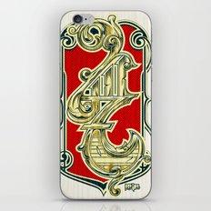 4117 iPhone & iPod Skin
