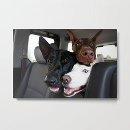 Are We There Yet? Metal Print