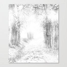 Trail Sketch Canvas Print
