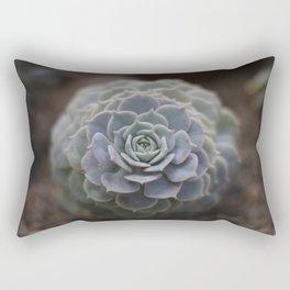 Succulent cactus aloe plant succulents boho chic nature photo Rectangular Pillow