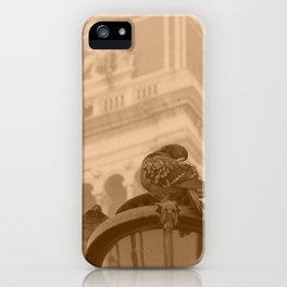 Venetian birds iPhone Case