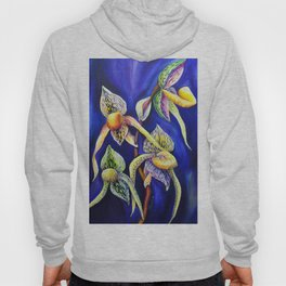 Orchid -  The Paphiopedilum , known as Lady's Slipper Hoody