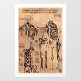 Study of Skeletons - Leonardo da Vinci Art Print