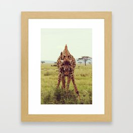 Giraffe Wants to Know Framed Art Print