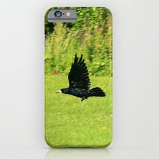 black crow in flight iPhone 6s Slim Case
