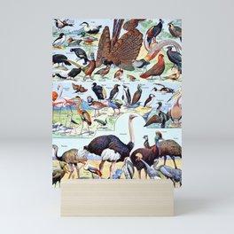 Adolphe Millot - Oiseaux pour tous B - French vintage poster Mini Art Print