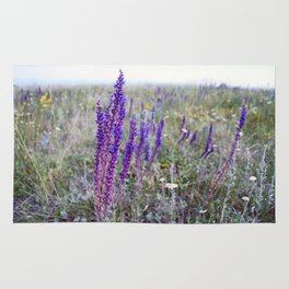 Rustic print Country photography wildflowers Botanical wall art Floral living room decor Rug