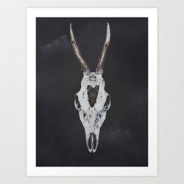 Roe Deer Skull with Death Hawk Moth Art Print