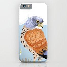 Lesser kestrel iPhone Case