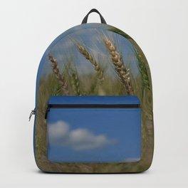 Grains Backpack