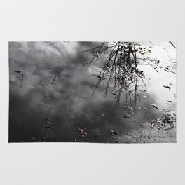 Cloudy Day Reflection Rug