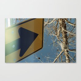 Going Nowhere Canvas Print