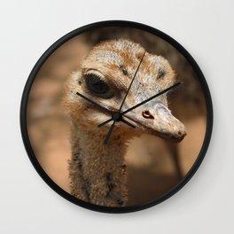 Ostrich Photograph Wall Clock