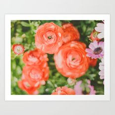 The joy of hot red flowers Art Print