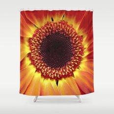 Harvest Sunflower Shower Curtain