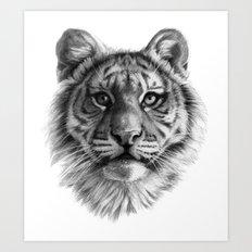 Tiger Cub SK106 Art Print