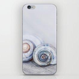 Blue Shells on white washed wood  pastel blues iPhone Skin