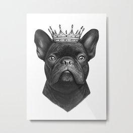 King french bulldog Metal Print