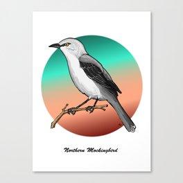 NORTHERN MOCKINGBIRD Canvas Print