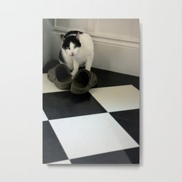 How Low Can YOU Go? Metal Print