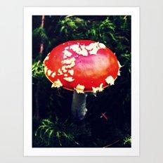 Fairytale Toadstool Art Print