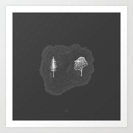 Pine & Eucalyptus Art Print