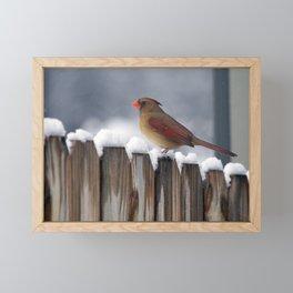 Female Cardinal on Snowy Fence Framed Mini Art Print