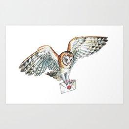 Mail Owl (Barn Owl)   Art Print