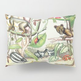 Endemic Species of Madagascar Pillow Sham
