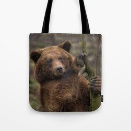 Brown Bear All Paws And Claws Tote Bag