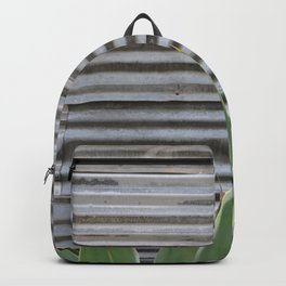 cactus and textured wall Backpack