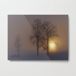 I see you now Metal Print