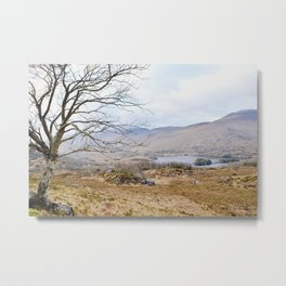 Ring of Kerry I Metal Print
