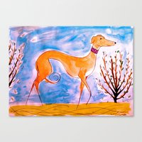 greyhound Canvas Prints featuring Greyhound by Caballos of Colour