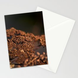 A Shadow Of The Past Stationery Cards